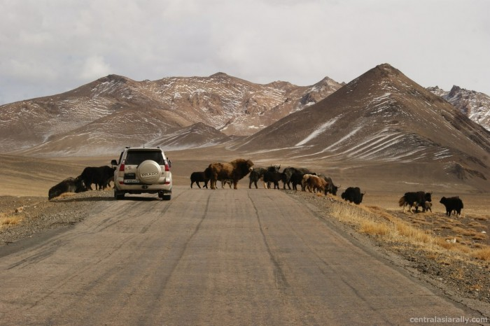 driving through central asia