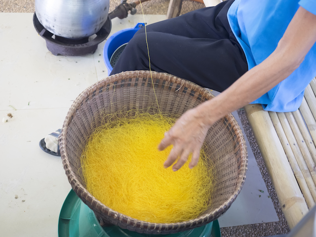 Lengthy Process. Photo Credit: Sarayut Hyongsit/ Shutterstock.com